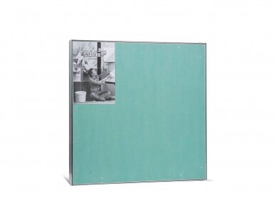 Revizinės durelės, dažomos TABLET 500 x 500